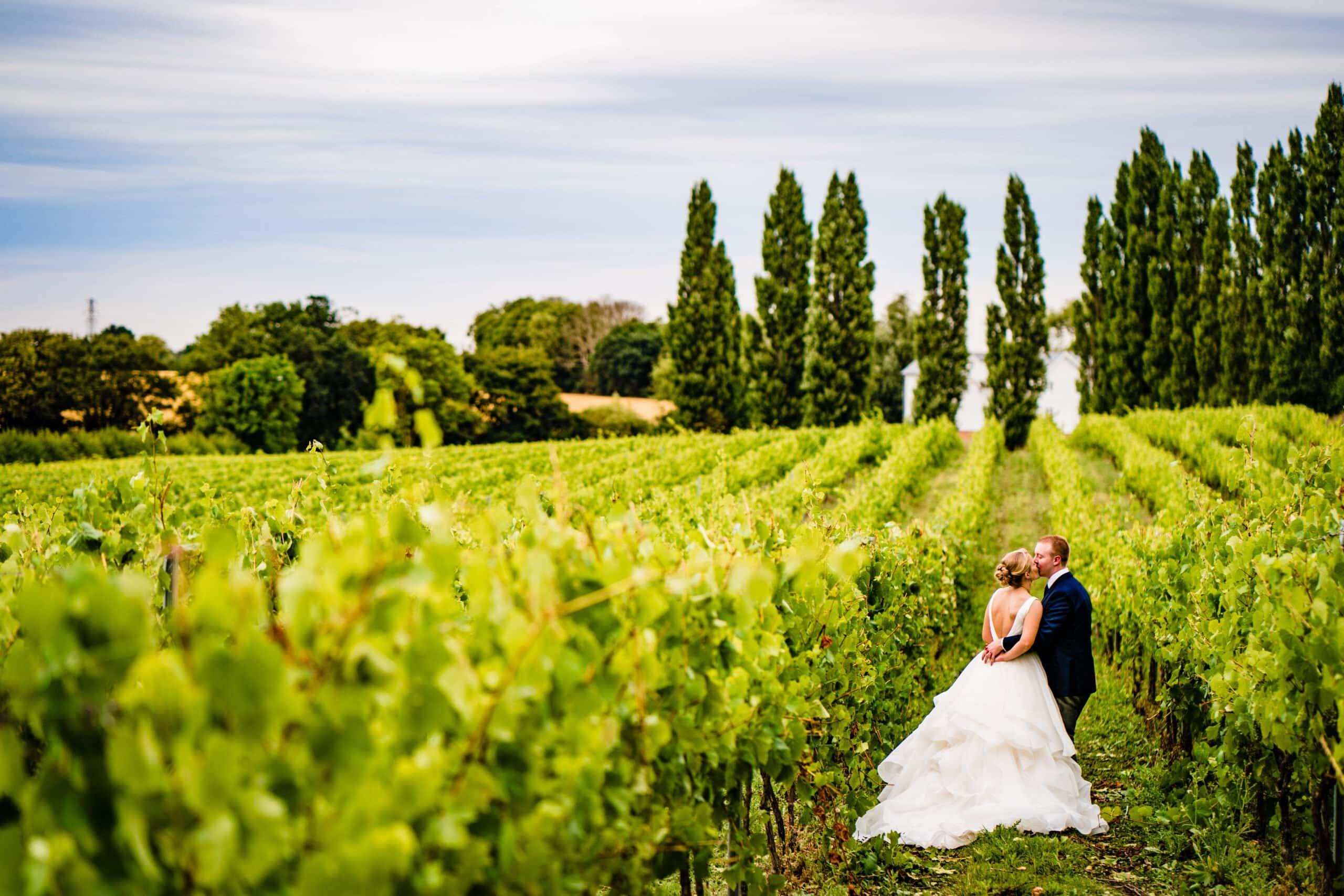 Bride and groom in vineyard at Baddow Park
