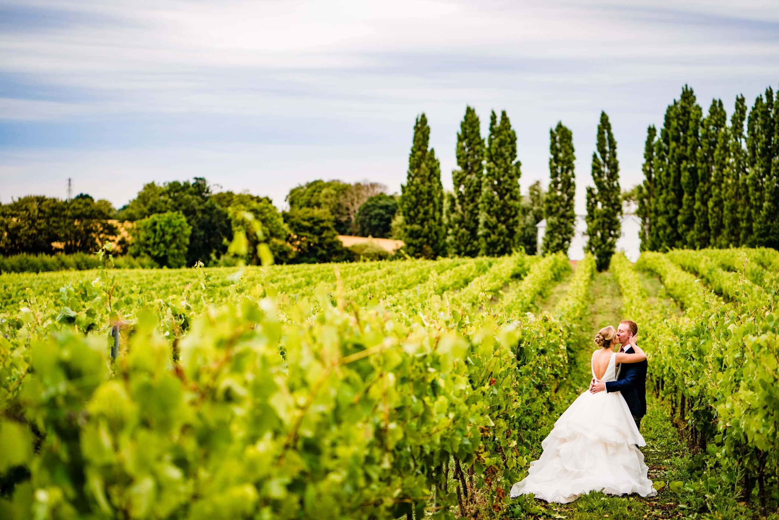 Baddow Park wedding essex with bride and groom in vineyard